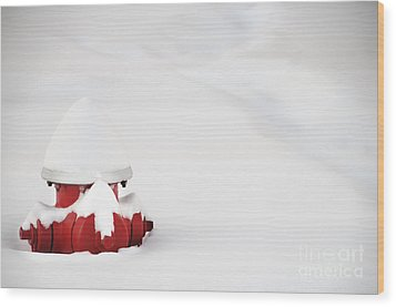 Red Fired Hydrant Buried In The Snow. Wood Print by Oscar Gutierrez