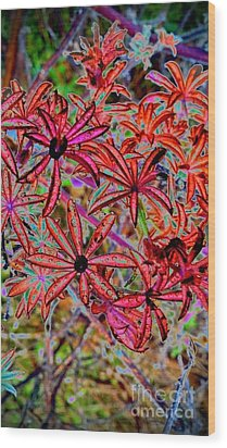 Red Flowers Wood Print by Karen Newell