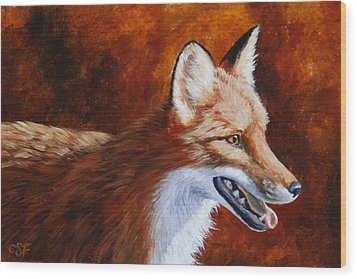 Red Fox - A Warm Day Wood Print by Crista Forest
