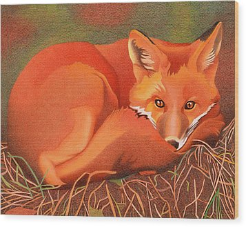 Red Fox Wood Print by Dan Miller