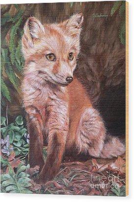 Red Fox Kit Wood Print by Nancy Andresen