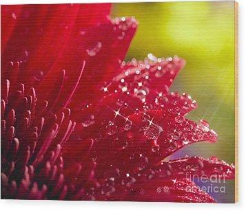 Red Gerbera Wood Print by Boon Mee