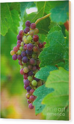 Red Grapes Wood Print by Hannes Cmarits