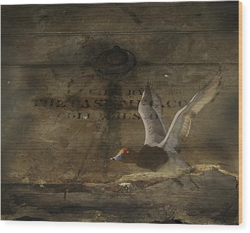 Red Head Duck Old Box Wood Print