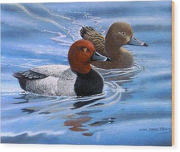 Red Headed Ducks Wood Print by Dan Terry