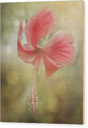Red Hibiscus Wood Print by David and Carol Kelly