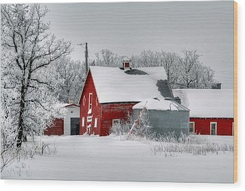 Red In White Wood Print by Larry Trupp