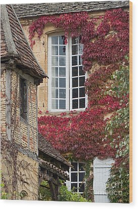 Wood Print featuring the photograph Red Ivy Window by Paul Topp