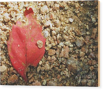 Red Leaf Wood Print by Venus