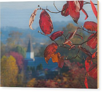 Red Leaves Blue Mountain Wood Print by Dorothy Walker