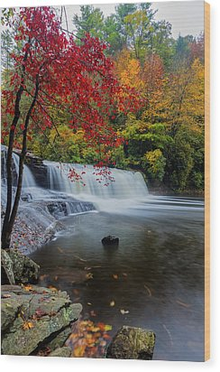 Red Leaves In Dupoint Park Hooker Falls Wood Print