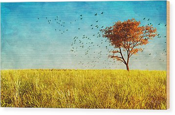 Red Maple Wood Print by Bob Orsillo