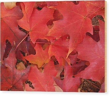 Red Maple Leaves Carpeting The Ground Wood Print by Patricia E Sundik