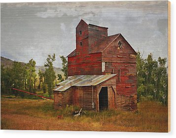 Red Mill Montana Wood Print by Marty Koch