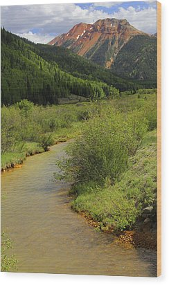 Red Mountain Creek - Colorado  Wood Print by Mike McGlothlen