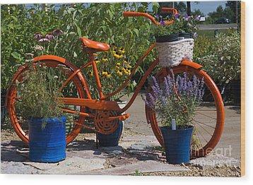 Red Orange Flower Basket Bike Wood Print