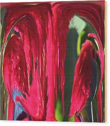 Red Orb Wood Print by Rhonda Humphreys