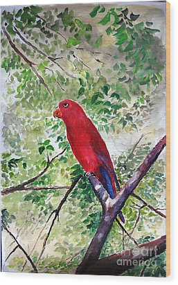 Wood Print featuring the painting Red Parrot Of Papua by Jason Sentuf