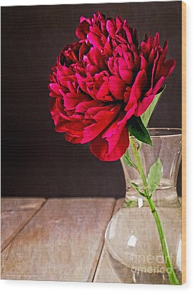 Red Peony Flower Vase Wood Print by Edward Fielding