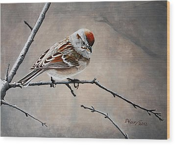 Red Poll Wood Print by Pam Kaur