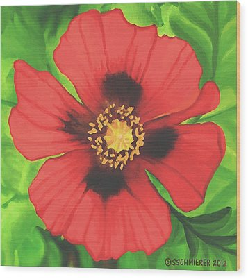 Wood Print featuring the painting Red Poppy by Sophia Schmierer