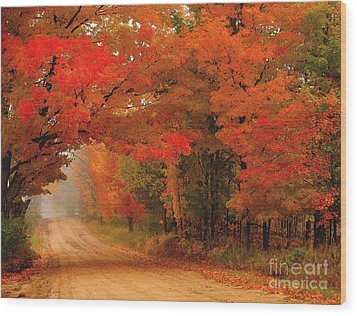 Red Red Autumn Wood Print by Terri Gostola