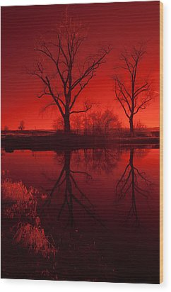 Red Reflections Wood Print