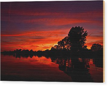 Red Ripples Wood Print