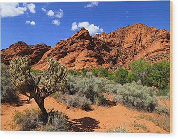 Red Rock And Blue Wood Print by Nick Oman
