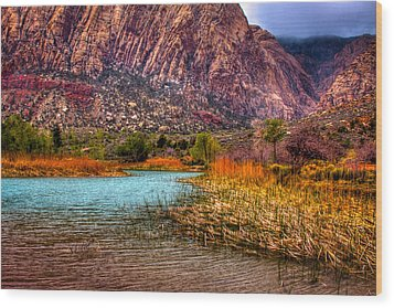 Red Rock Canyon Conservation Area Wood Print