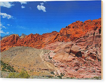 Red Rock Canyon Wood Print by Mariola Bitner