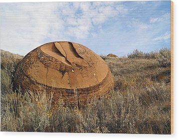 Red Rock Coulee I Wood Print by Leanna Lomanski