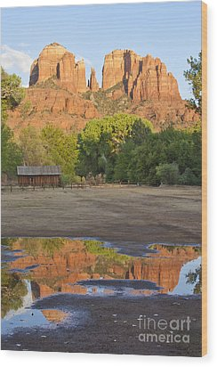 Red Rock Crossing Wood Print by Ruth Jolly