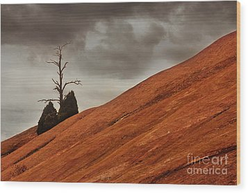 Wood Print featuring the photograph Red Rock by Dana DiPasquale