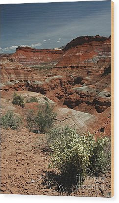 801a Red Rock Formations Wood Print by NightVisions