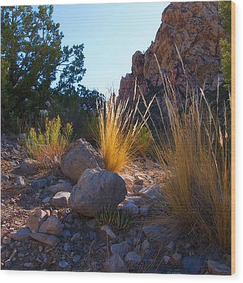 Red Rock Morning Light Wood Print