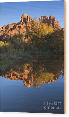 Red Rock Reflections Wood Print by Mike  Dawson