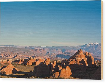 Red Rocks And The La Sal's Wood Print