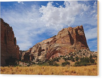 Red Rocks Wood Print by Donald Fink