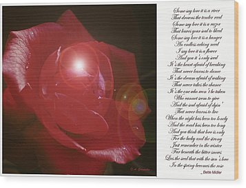 Red Rose Wood Print by A Gurmankin