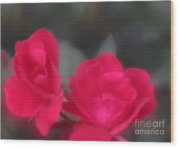 Wood Print featuring the photograph Red Rose Harmony by Mary Lou Chmura