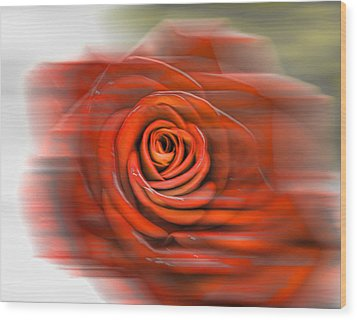 Wood Print featuring the photograph Red Rose by Leif Sohlman