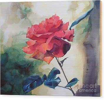 Red Rose On A Branch Wood Print