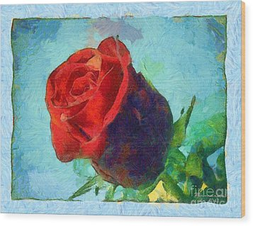 Red Rose On Blue Wood Print by Dana Hermanova