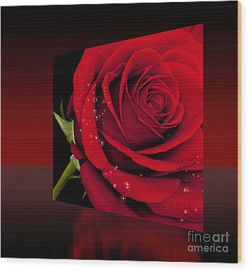 Wood Print featuring the photograph Red Rose by Shirley Mangini