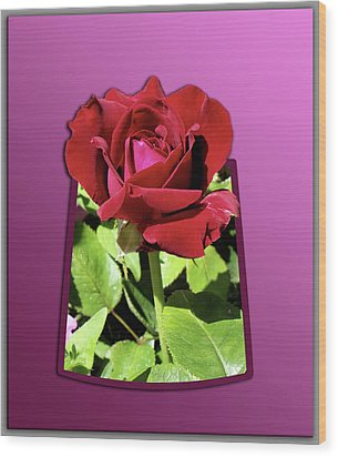 Red Rose Wood Print by Thomas Woolworth