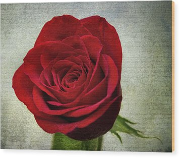 Red Rose V2 Wood Print