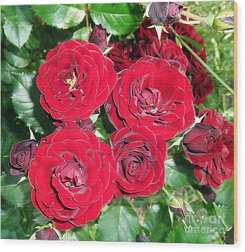 Wood Print featuring the photograph Red Roses by Vesna Martinjak