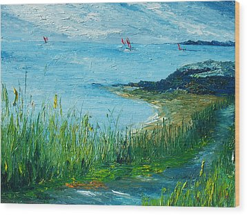 Red Sails In Galway Bay Wood Print by Conor Murphy