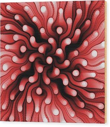 Red Sea Anemone Wood Print by Anastasiya Malakhova